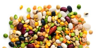 Pulses-protein