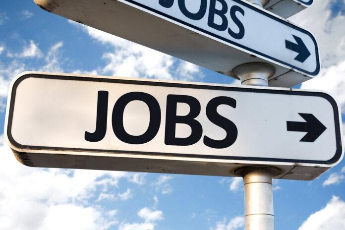 dsssb-various-post-recruitment
