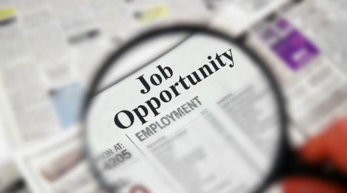 rajasthan-rvunl-junior-assistant-and-other-various-posts-recruitment