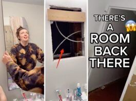 woman-found-a-way-to-go-to-an-intelligence-three-bhk-apartment-from-the-bathroom